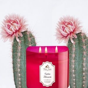 NEW Cactus Blossom Candle